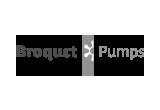 160X110px _broquet_pumps