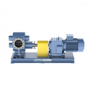 Broquet Pumps